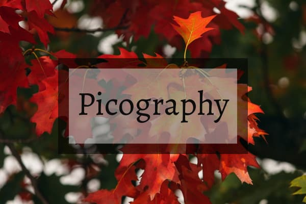 Picography