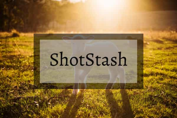 ShotStash
